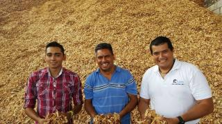 Biomass bussiness in Mexico